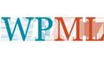 wpml-icon